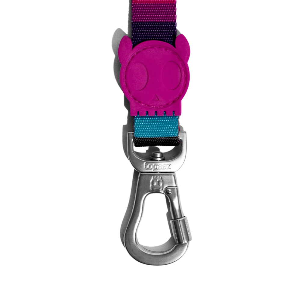 ZeeDog Dog Leash - Prisma