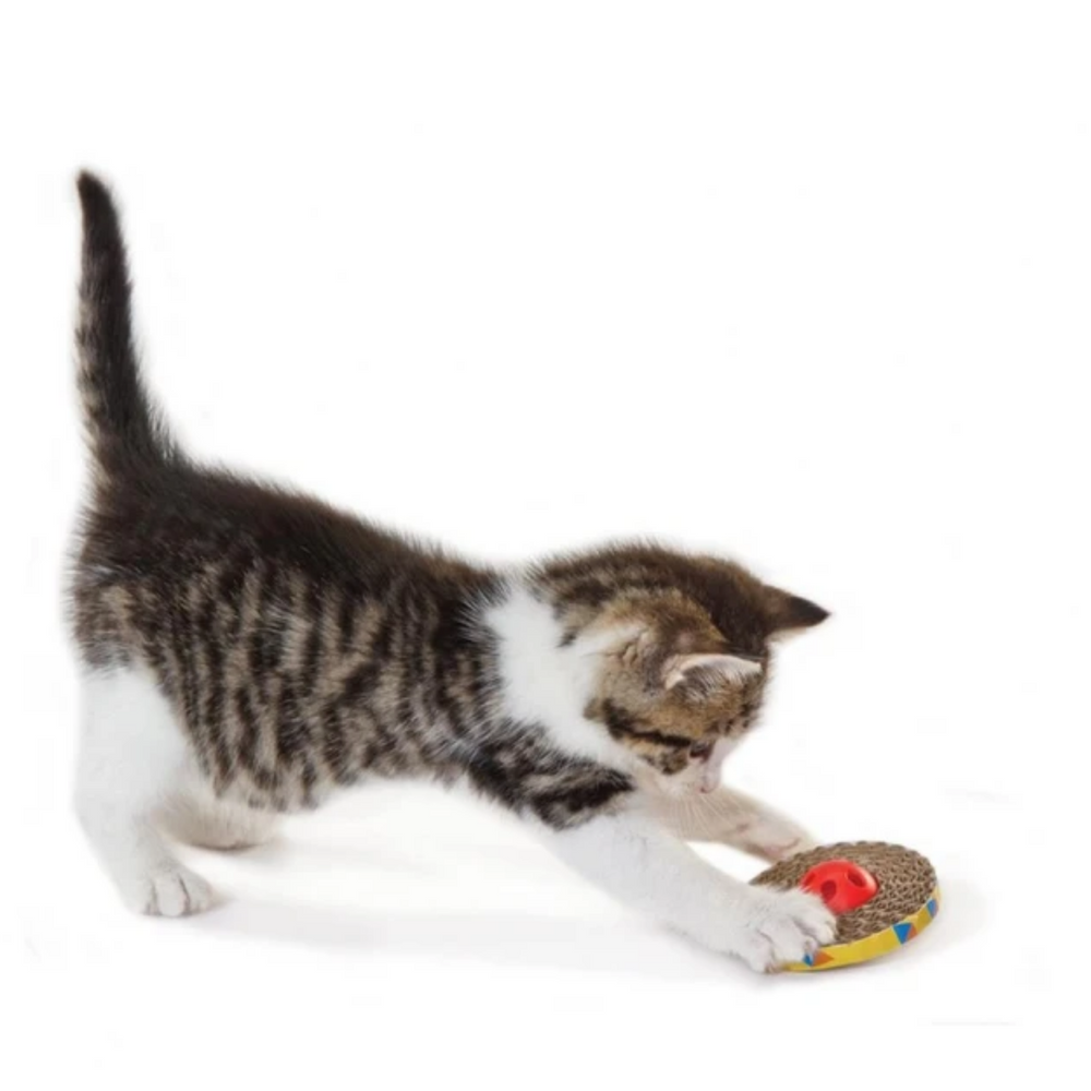 Petstages Cat Toys - Spin & Scratch