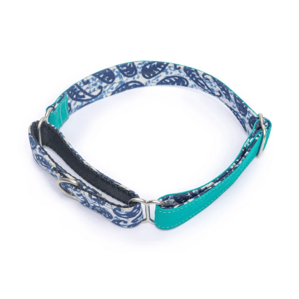 Petwale Martingale Collar - Turquoise