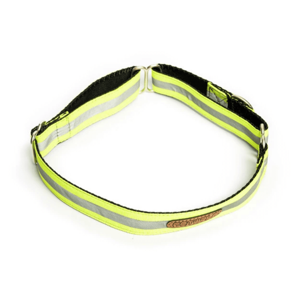 Petwale Martingale Collar - Reflective Green