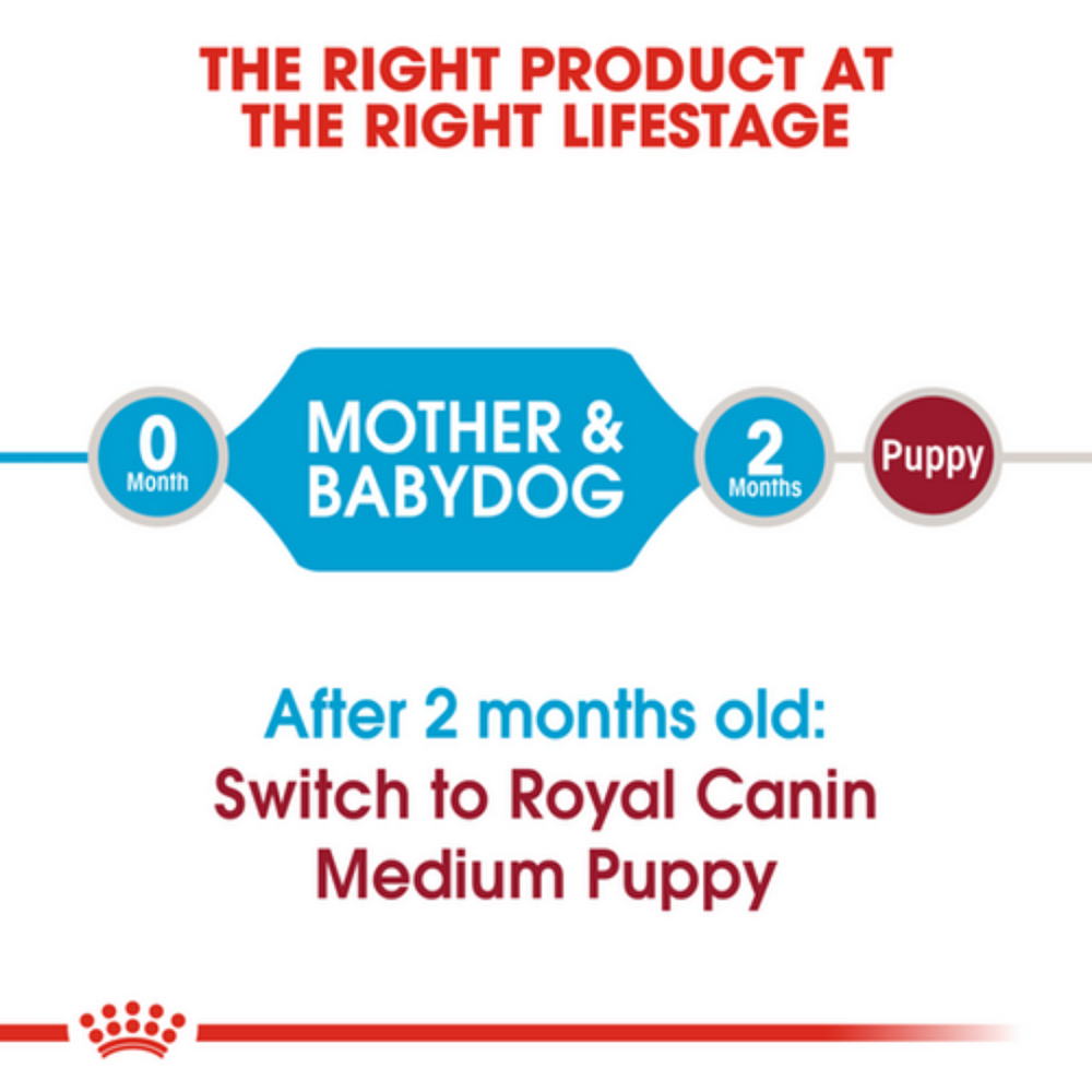 Royal Canin Medium Breed Starter (Multiple Sizes)