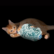 Petstages Cat Toys - Nighttime Cuddle Toy