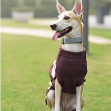 Mutt Of Course Dog Sweater - Purple Knitted TurtleNeck