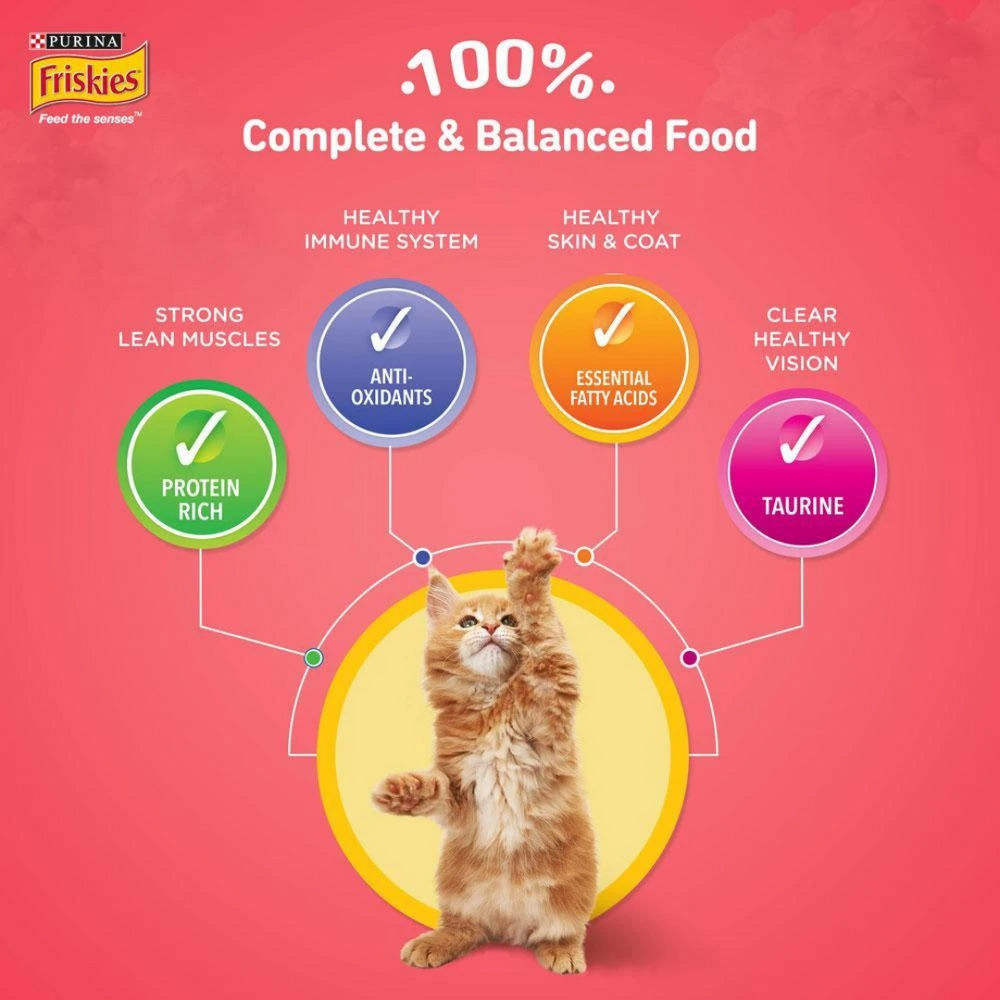 Purina Friskies Dry Cat Food - Kitten Discoveries (Kitten) - 1.1.kg