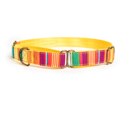 Petwale Martingale Collar - Colourful Stripes