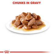 Royal Canin Kitten Food - Gravy (85g x 12 Pouches)
