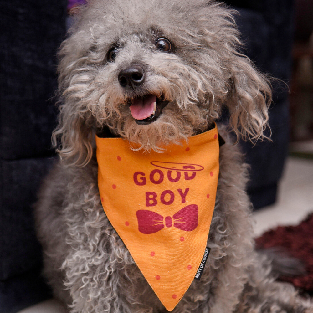 Mutt Of Course Good Boy Bandana