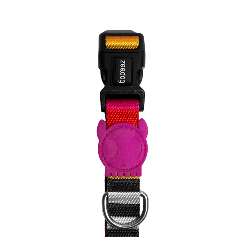 ZeeDog Dog Collar - Prisma