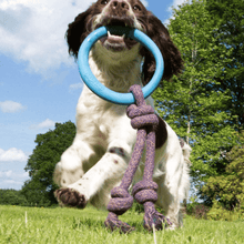 Becopets Dog Toys - Natural Rubber Hoop on Rope