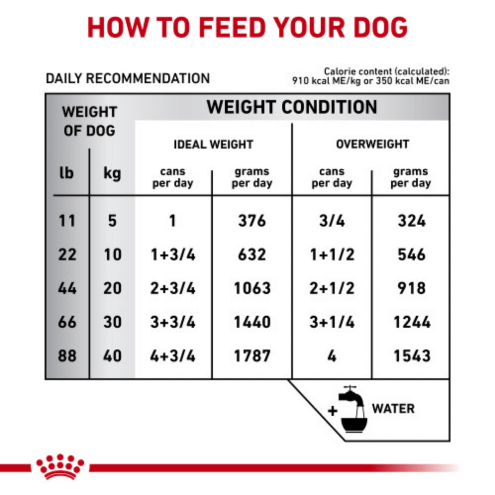 Royal Canin Vet Diet - Wet Dog Food - Gastro Intestinal Adult Low Fat - 400g
