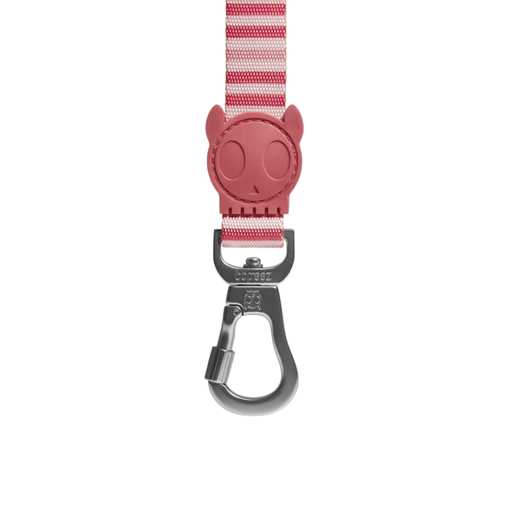 ZeeDog Dog Leash - Peppermint