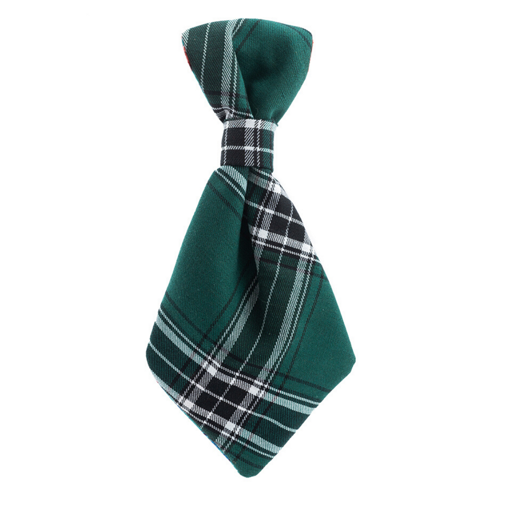Hazel & Co - Checkered in Green (Petsy Exclusive)