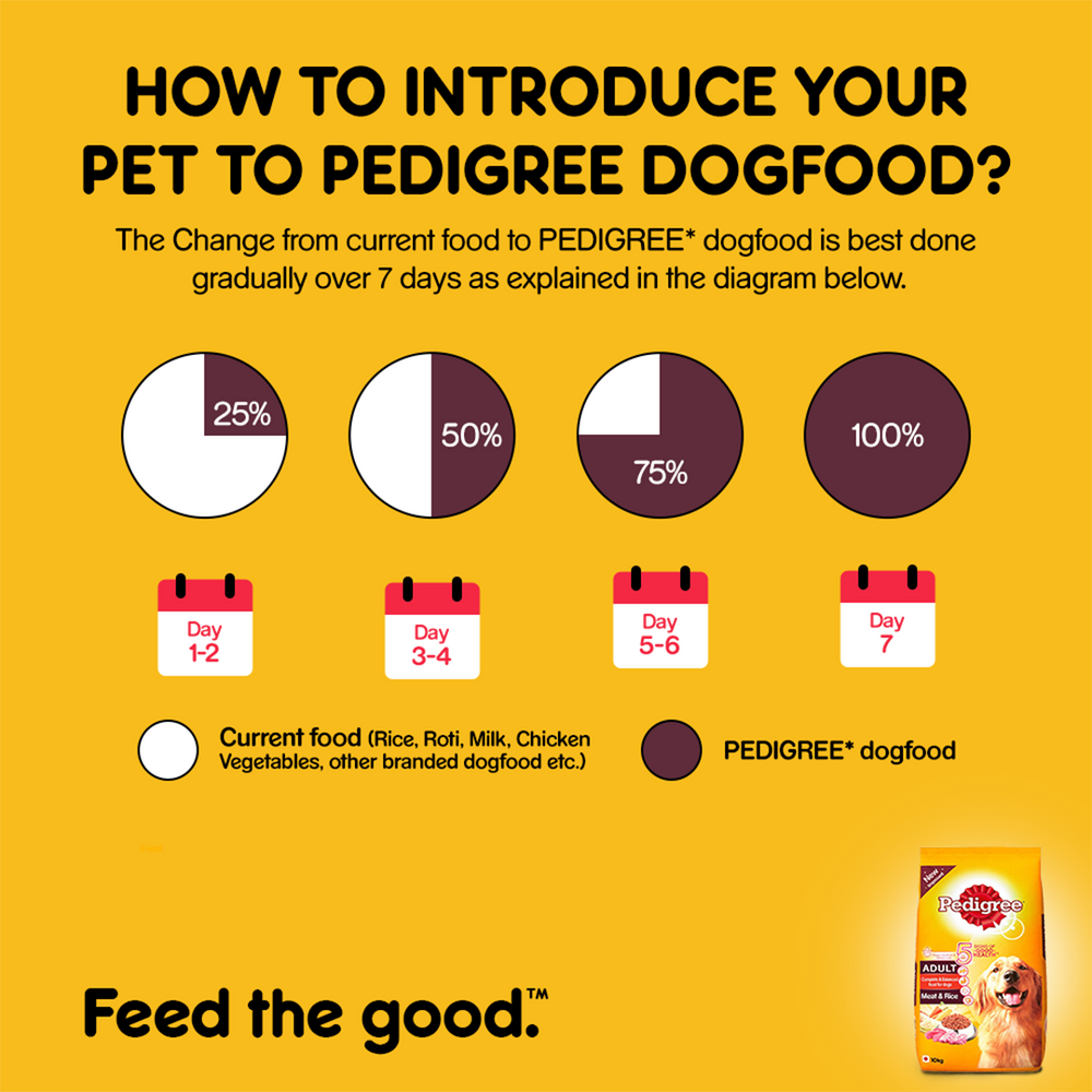 Pedigree Adult Dog Food - Meat and Rice