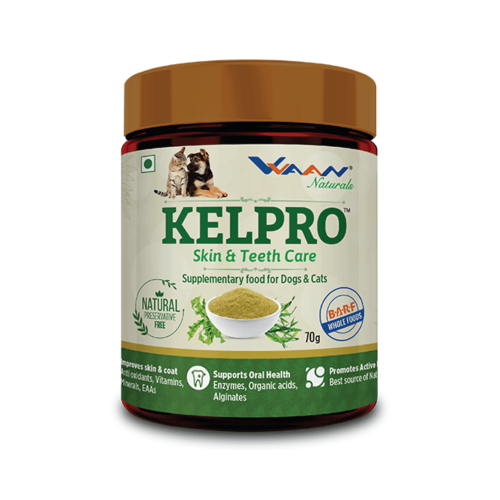 Vvaan Supplements for Cats & Dogs - Kelpro Skin & Teeth Care (70g)