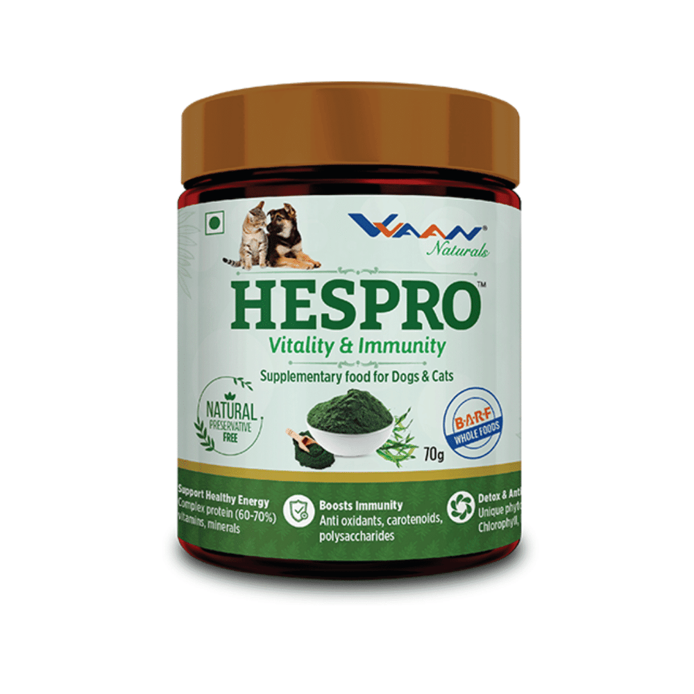 Vvaan Supplements for Cats & Dogs - Hespro Vitality & Immunity (70g)