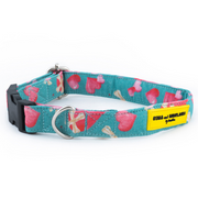 Stars and Snowflakes Digital Print Cotton Collar - Love Petsy (Exclusive to Petsy)