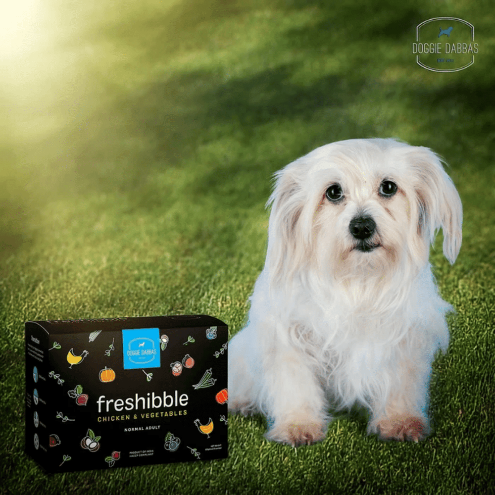 Doggie Dabbas Freeze Dried Dog Food - Freshibbles Chicken & Vegetables