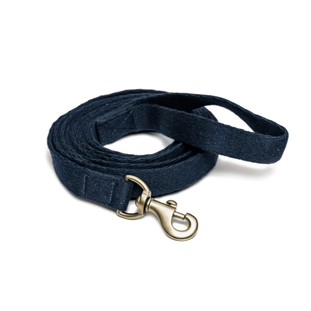 Petwale Long Lead Cotton Blue