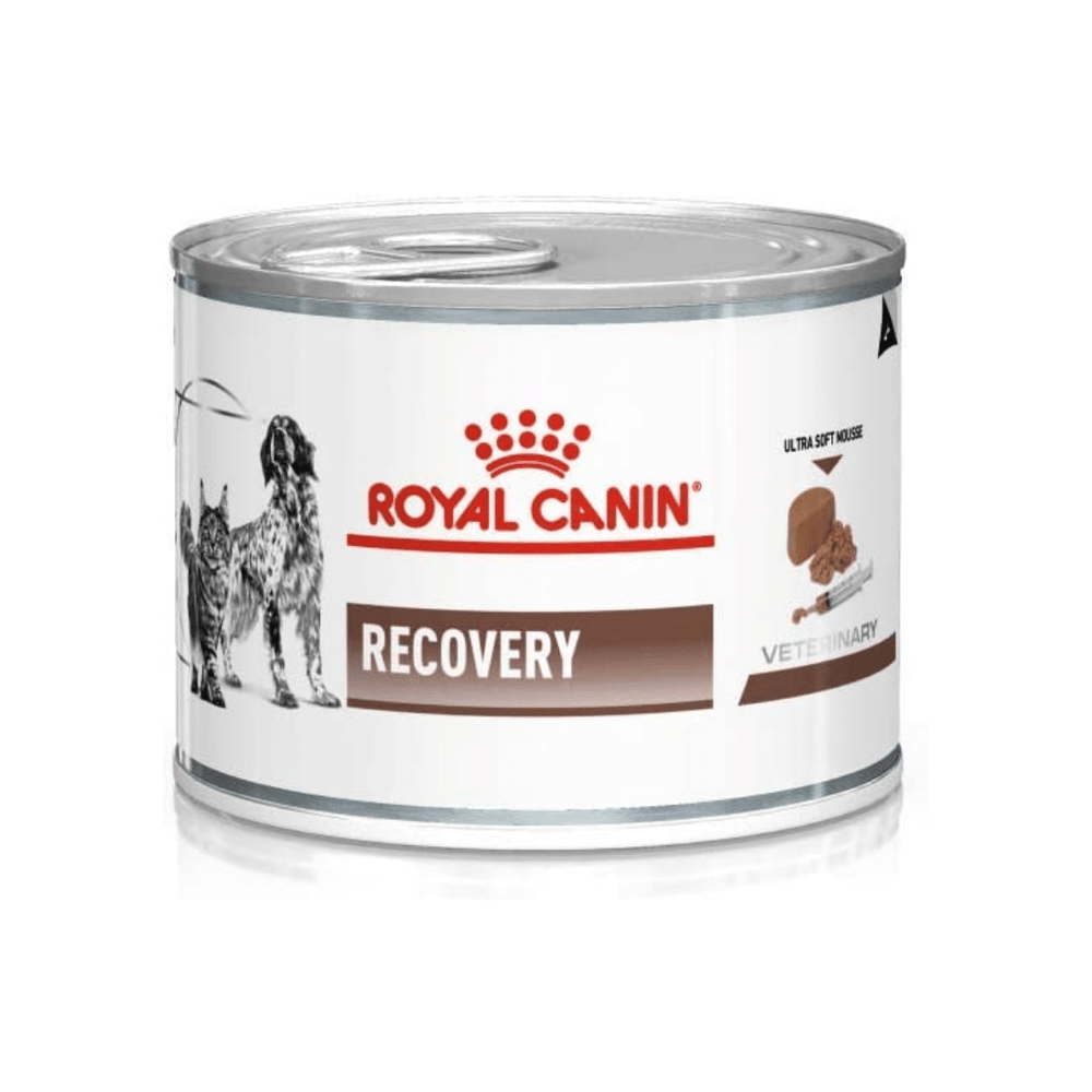 Royal Canin Vet Diet - Wet Cat & Dog Food - Recovery - 195g