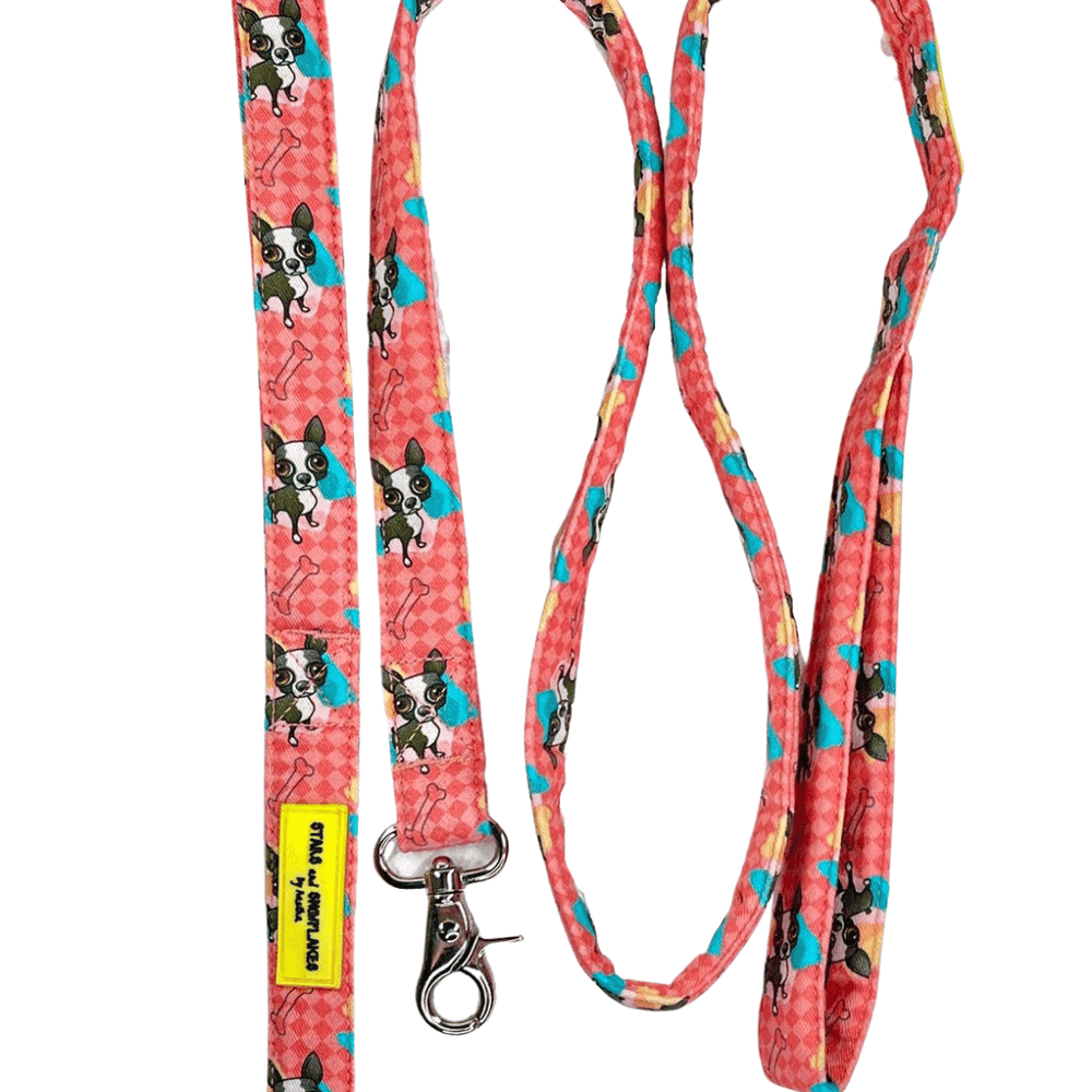 Stars and Snowflakes Cotton Leash - Love My Doggy