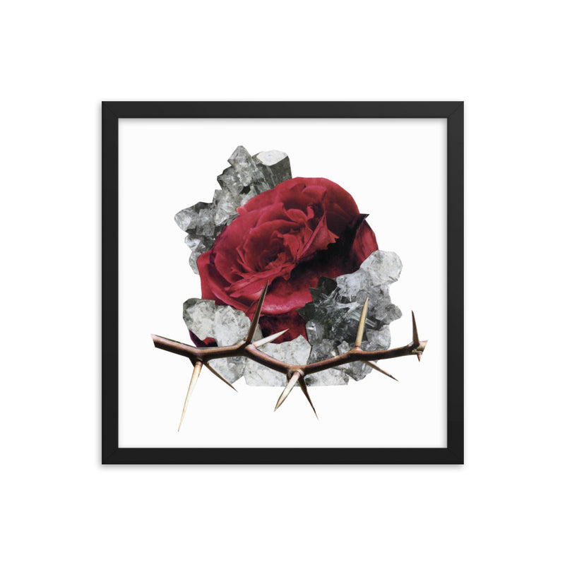 ROSE FRAMED PRINT - 16 X 16