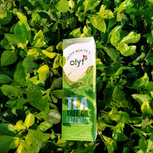 Load image into Gallery viewer, Olyf Face wash - Tea tree, 100ml - Olyf By Olive Route | Buy Natural, Vegan, Traditional Indian Products