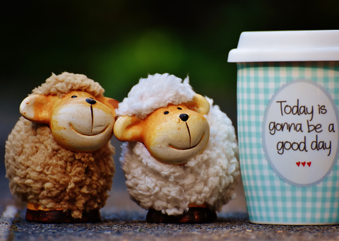 Two toy sheep with a cup with the slogan Today is gonna be a good day