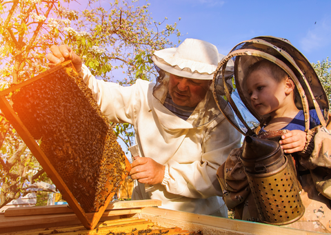 Beekeeper, Beehive and Young Boy living Life and Having Experiences