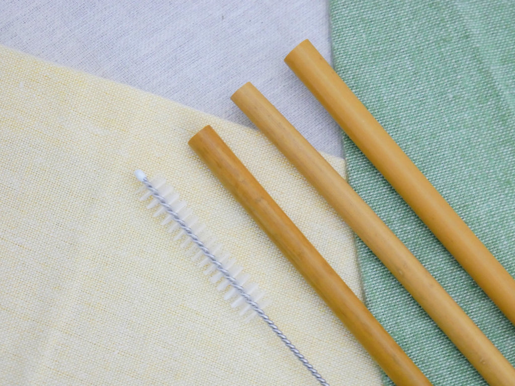 Bamboo Straw 3 Pack with Brush