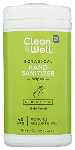 CleanWell Botanical Hand Sanitizer Wipes, Citrus Thyme, 40 Count (1 PK) - Alcohol Free, Antibacterial, Kid Friendly, Plant-Based, Nontoxic, Cruelty Free, Moisturizing Formula, [wellica]