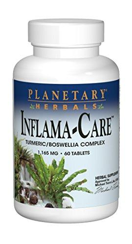 Bone & Joint, Mushrooms, Planetary Herbals, Source Naturals - Planetary Herbals, virus buster - Wellica