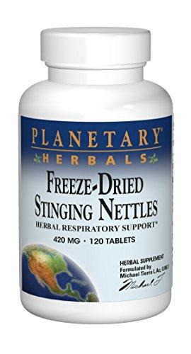Nettle, Planetary Herbals, Source Naturals - Planetary Herbals - Wellica