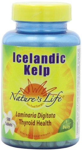 Nature's Life Icelandic Kelp Tablets, 41 Mg, 500 Count, [wellica]