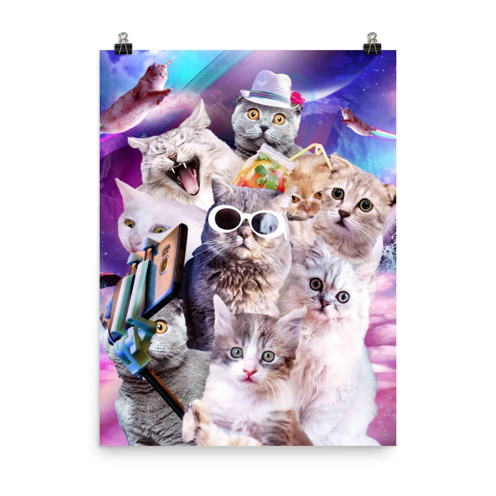 RandomGalaxy 18×24 Kitten Cat Selfie In Space With Unicorn Cat Poster