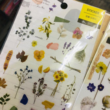 Load image into Gallery viewer, BERG Plant Transparent Sticker Sheet