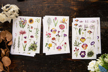 Load image into Gallery viewer, OURS Studio Varies Flowers Sticker Pack