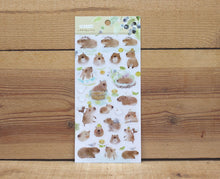 Load image into Gallery viewer, Liang Feng Watercolor Cabybara Transparent Sticker Sheet