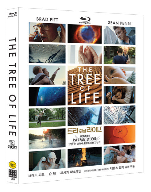 The Tree Of Life with full slip
