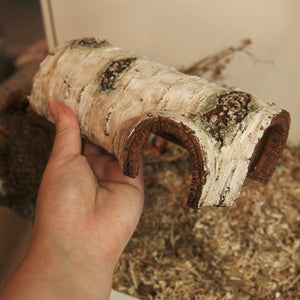 Faux birch hideout