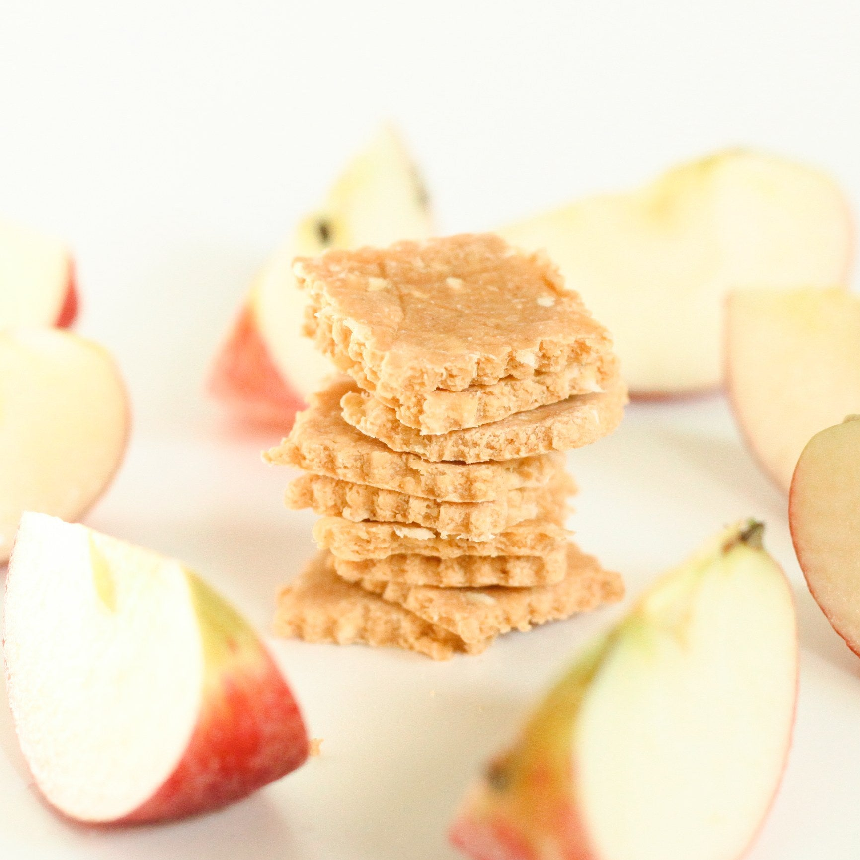 Apple and Cheese Cracker