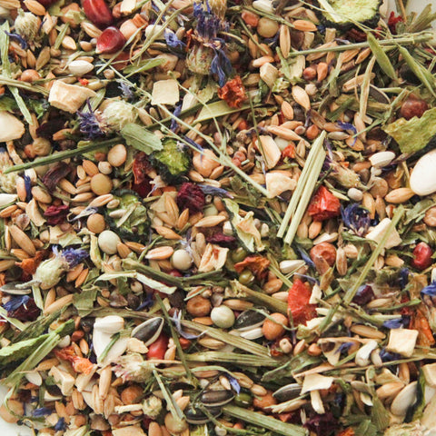 Fatpouches' Foraging Seed Mix - Syrians