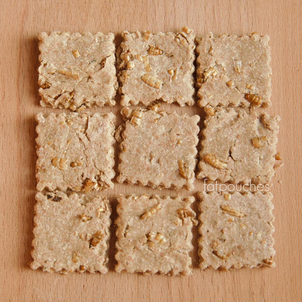 Mealworm Cheese Cracker (8/pkt)