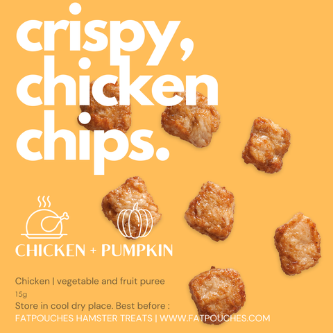 Chicken + Pumpkin Chips