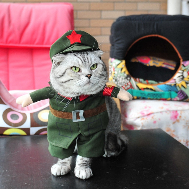 Cats People's Liberation Army Costume