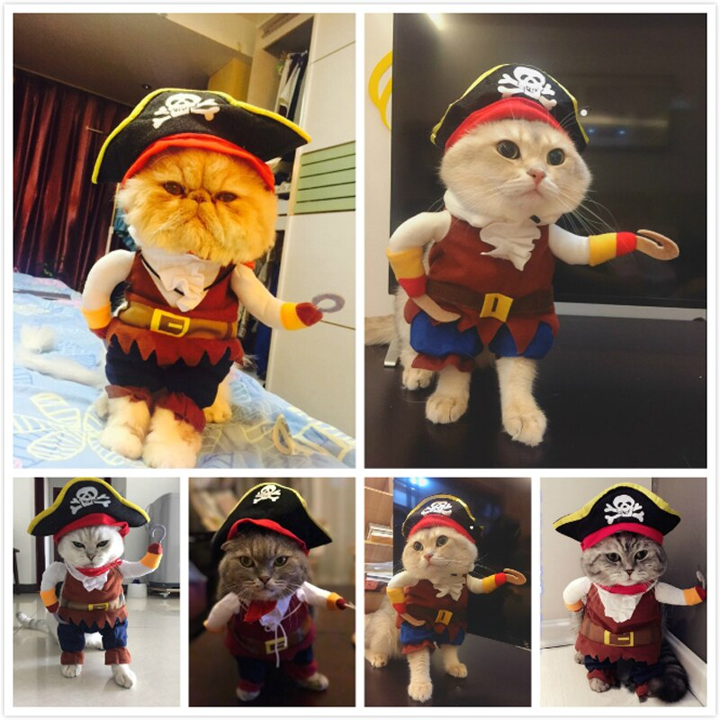 Funny Pet Cat Pirate Suit
