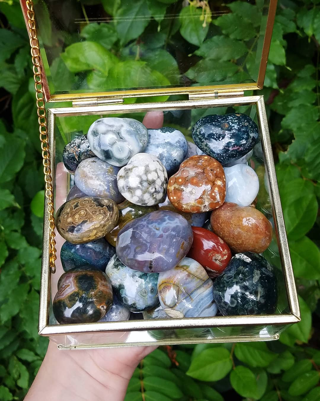 ocean jasper heart crystals in a glass box