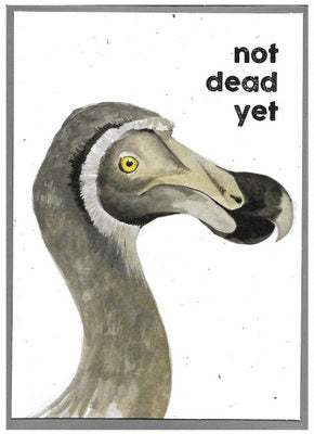 Gift card - not dead yet dodo from Quirky Bird