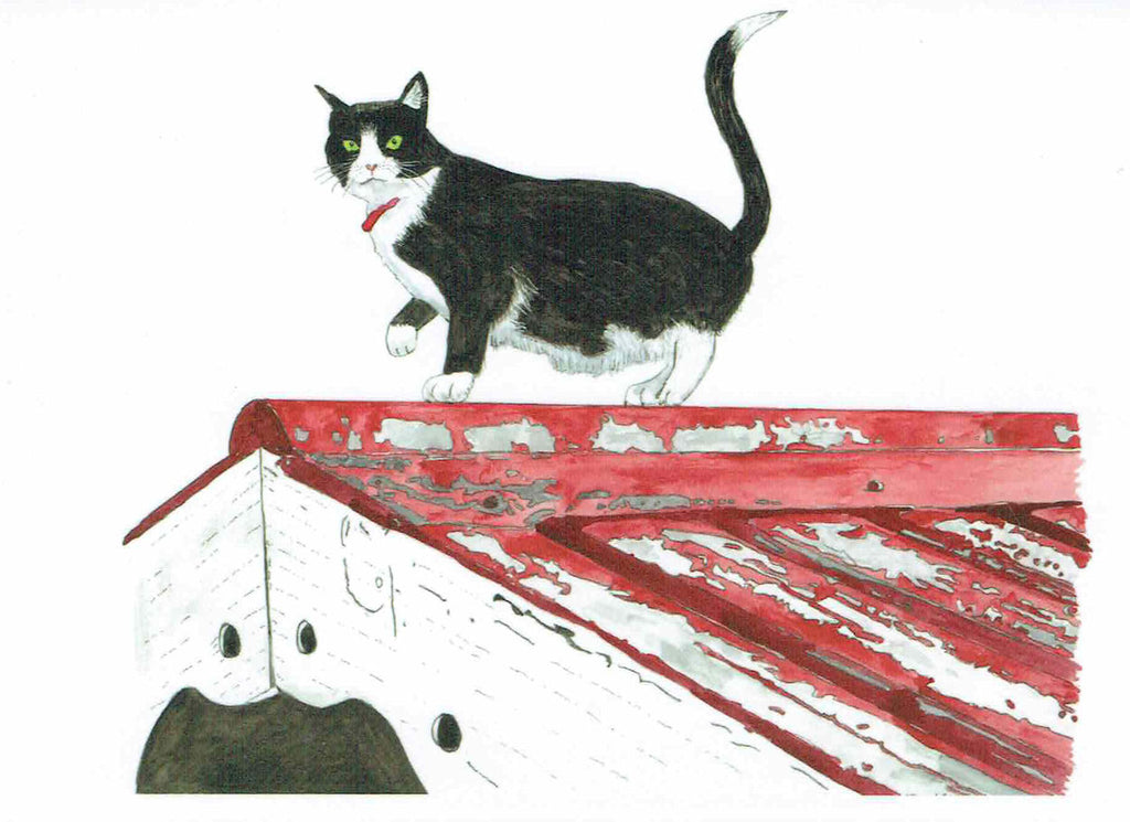 "Card ""Like a cat on a hot tin roof"" by Tasmanian Artist Grant Lennox"