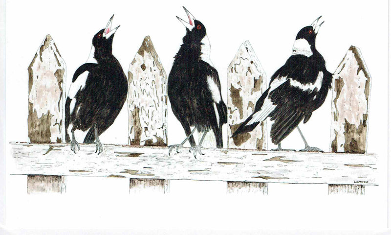 "Card ""Magpie Cheer Squad"" by Tasmanian Artist Grant Lennox"