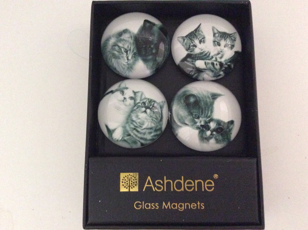 Magnets - Glass - feline friends from Ashdene - pack of 4